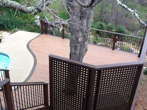 trex-deck-with-privacy-screen